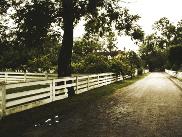 Path in Williamsburg, Virginia
