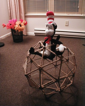 Geodesic spheres; Cat tested, Matias approved